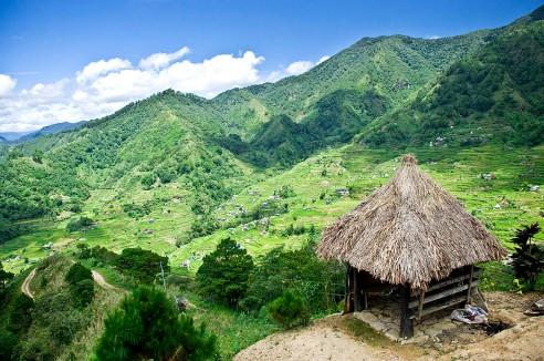 rice-terraces-0