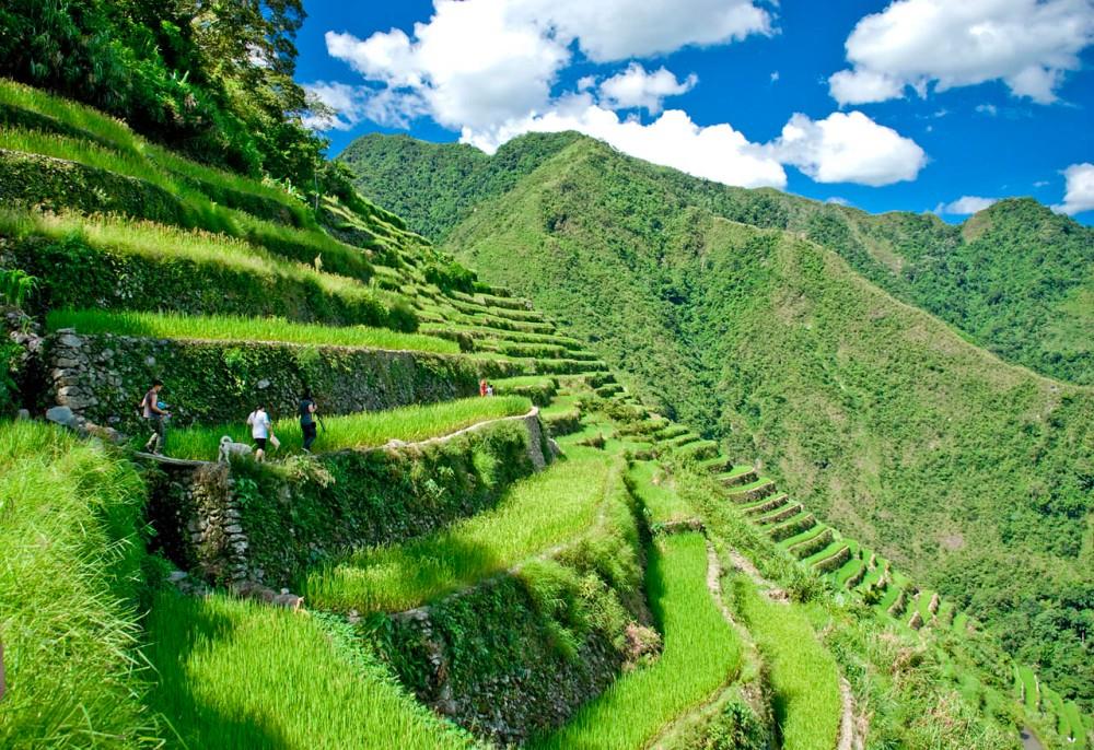 rice-terraces-11