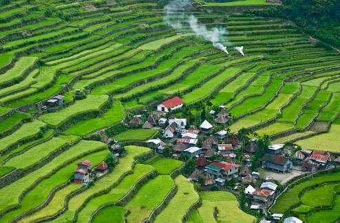 rice-terraces-14